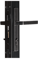 Aluminum-Swinging Door-NS212T_MS362T Entrance Door-10000 Multi-Fold Door-Vogue I Multipoint Handle Black Finish